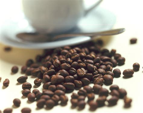 celebremos la recuperacin gua 0829766685 celebremos el d 237 a del caf 233 tomando caf 233 peruano gua 3 0
