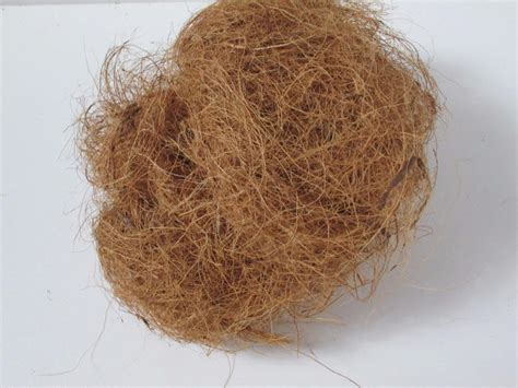 nesting nest material for canaries canary dove coconut