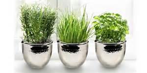 vasen silber edelstahl silber und co versilberte vasen silbervasen und