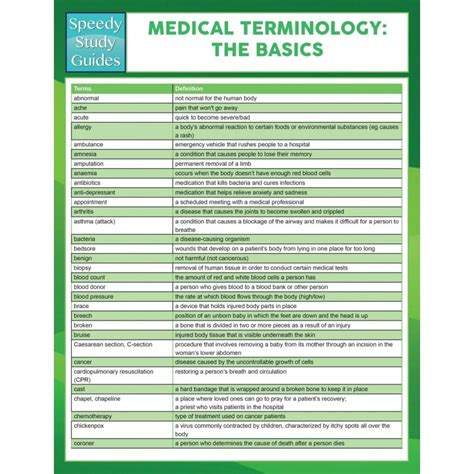 medical terms medical terms 137 best images about human anatomy and