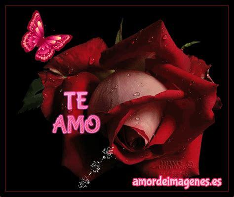 imagenes de rosas violetas con frases imagenes animadas con movimiento y brillo gifs de flores