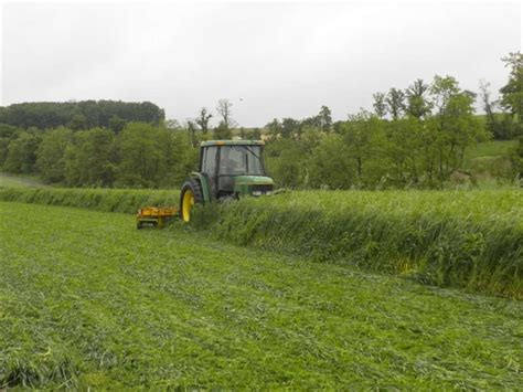 Viewing A Thread Favorite Silage by Viewing A Thread Can You Mix Triticale And Crimson