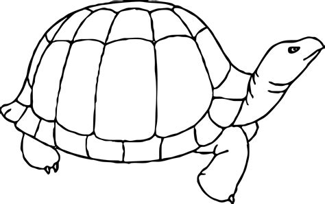 happy turtle coloring page happy tortoise turtle coloring page wecoloringpage
