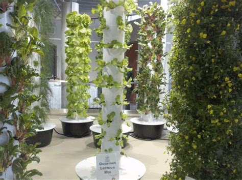 aeroponic vertical garden powerhouse growers