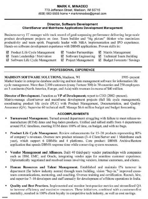 resume summary examples for software developer thisisantler