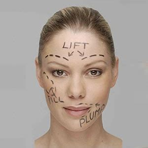 Plastic Surgery Against Plastic Surgery Persuasive Essay Sle