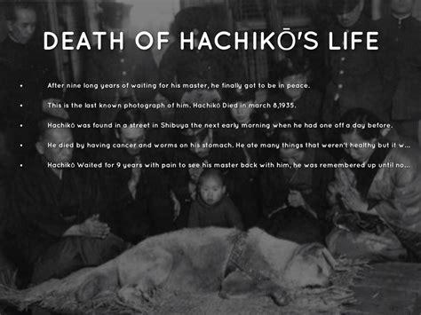 Hachikō by Flor Diaz Hachiko Movie