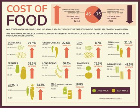 cost of living in chicago in 2017 food transport real infographic rajapaksa s lies and the real cost of living