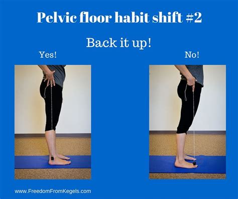 Pelvic Floor Dysfunction Exercises by 17 Best Images About S Health On
