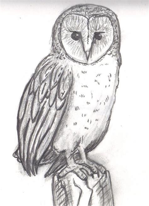 Barn Owl Sketch By Topendi On Deviantart Barn Owl Drawing