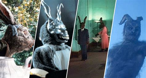 film giant rabbit 7 scariest rabbits in movie history features way too indie