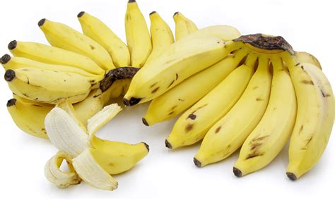 apple banana apple bananas information recipes and facts