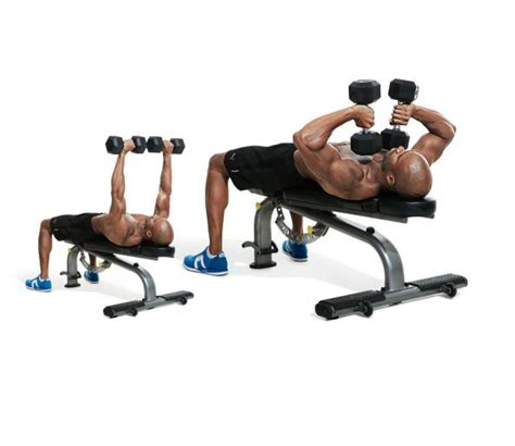 ectomorph bench press tate press the 30 best arms exercises of all time men