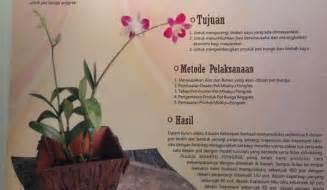 Pot Anggrek Kayu Ulin mbakyu pongrek limbah kayu untuk pot bunga anggrek