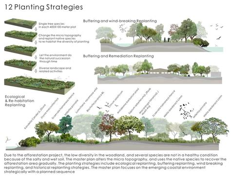 thesis on translation strategies best 25 landscape diagram ideas on pinterest urban