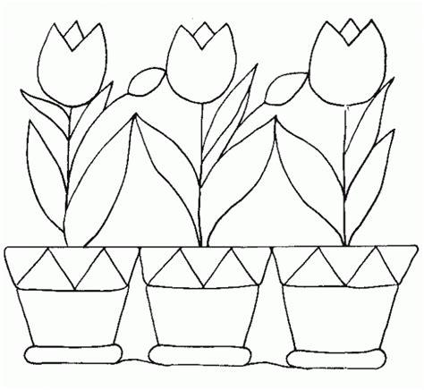 imagenes de animales y plantas para colorear animales y plantas para colorear imagui