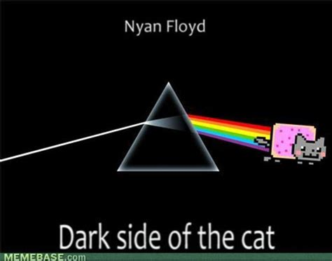 Nyan Cat Know Your Meme - image 136500 nyan cat pop tart cat know your meme