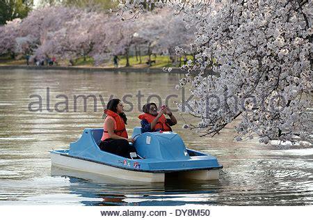 paddle boats jefferson memorial paddle boat on the tidal basin washington dc usa stock