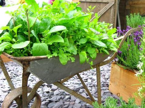 Decorative Watering Cans 10 ideias para vasos hortar