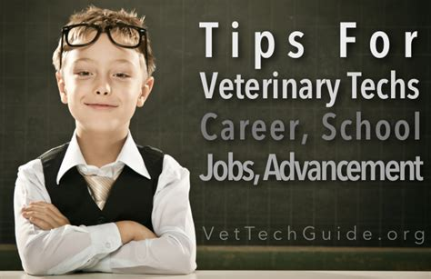 the vet tech guide releases a series of new guides for current and future veterinary technicians
