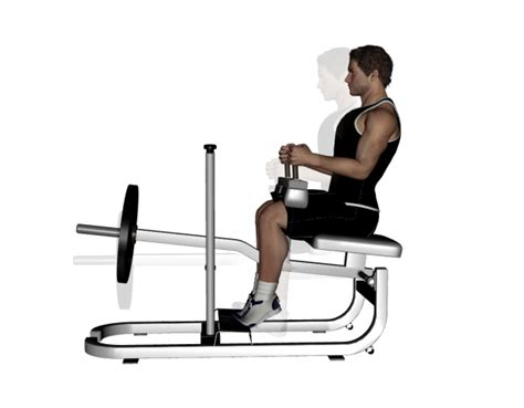 smith machine seated calf raise weight loss doctors in nj fast weight loss plan seated