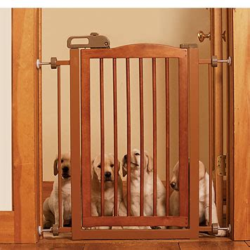 house dog gates dog gates wood door frame dog gate orvis