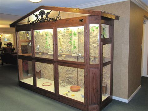 amazing indoor aviary for feathery friends about pet