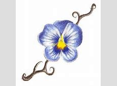 Second tattoo--September 2011. A Johnny Jump-Up pansy, in ... Johnny Jump Up Flower Tattoo