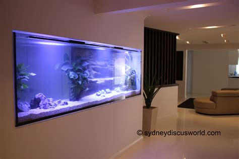 aquarium design sydney custom built aquariums sydney australia custom fish tanks