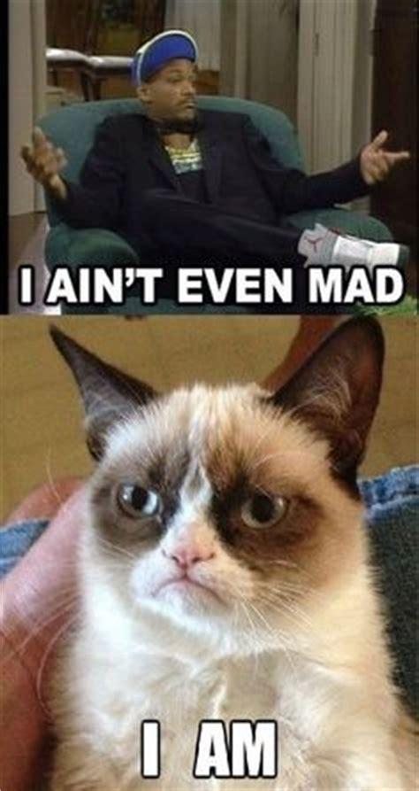 Sarcastic Cat Meme - sarcastic funny memes image memes at relatably com