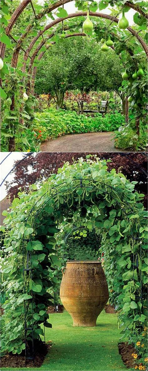 Garden Structure Ideas 21 Easy Diy Garden Trellis Vertical Growing Structures