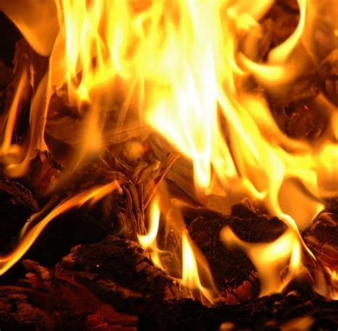 How To Light A In A Fireplace 7 Steps