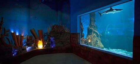 Lu Aquarium lanzarote aquarium lanzarote parcs de loisirs