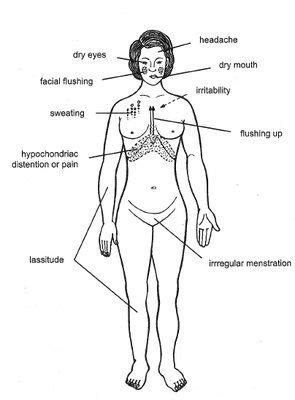 Acupressure Points For Liver Detox by Pin By Ourspace Acupuncture On Acupuncture Pins Needles