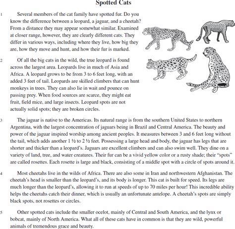 Cat In The Analysis Essays by Why Dogs Are Better Than Cats Persuasive Essay Research Papers Industry Analysis