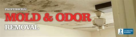 mold odor removal rochester ny county free consultation
