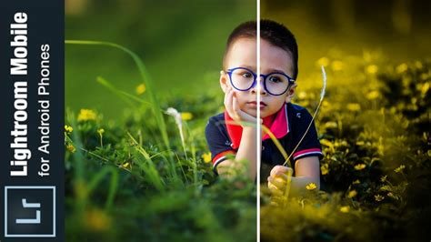 tutorial tone lightroom android perfect photo color correction on android lightroom