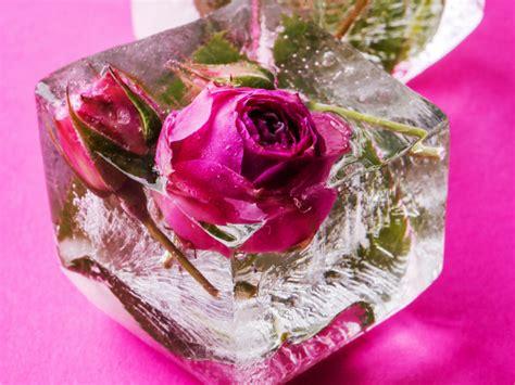 imagenes de rosas originales ideas originales para decorar con flores decoracion en