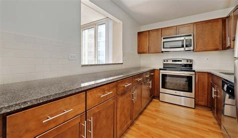 1 bedroom apartments in hyde park chicago hyde park tower apartments rentals chicago il