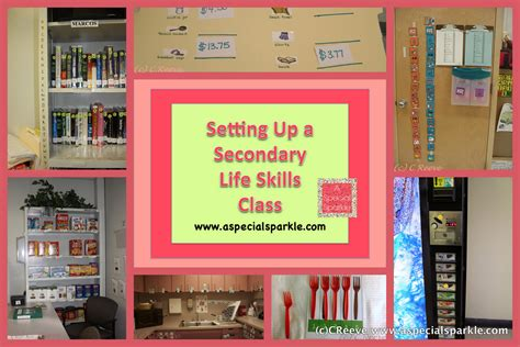 themes secondary education a special sparkle setting up a secondary life skills class