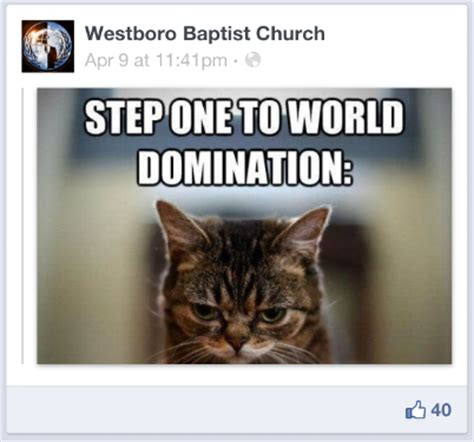 Lesbian Cat Meme - cat church email address photos phone numbers to cat