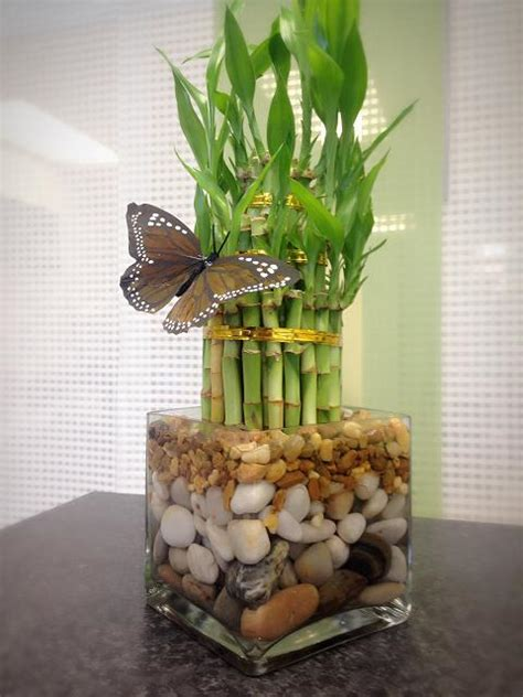 lucky bamboo pyramid flower bouquet delivery   miami