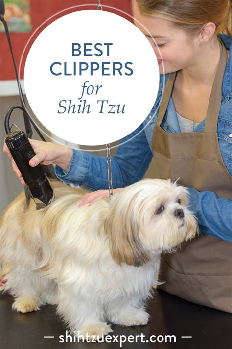 Best Clippers For Shih Tzu March 2018 Buyer S Guide And Reviews