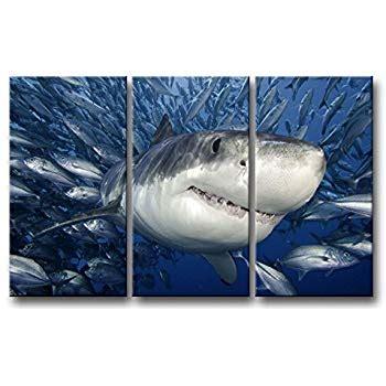 amazoncom  piece blue wall art painting shark catching