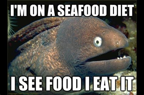 Funny Fish Memes - bad joke eel fishing meme gallery fish around