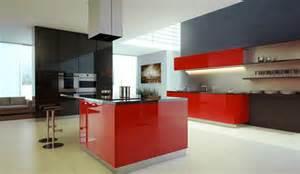 trendy kitchens trendy kitchen designs images iroonie com