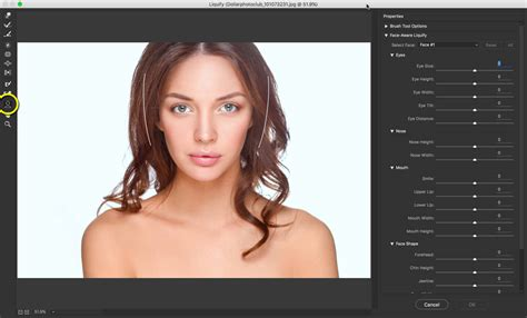 reset liquify tool photoshop face liquify tool in photoshop change that face structure