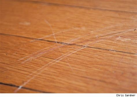 Wood Floor Scratch Repair The Philosophy Of Interior Design 2014 Kitchen Remodeling Trends Part 3 Flooring