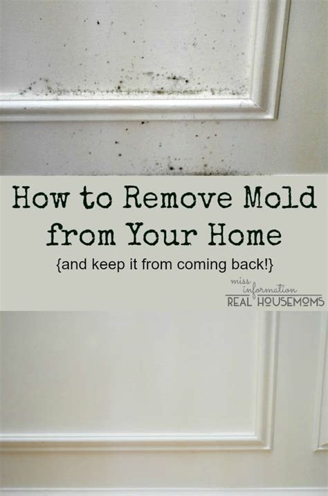 how to remove mold from a bathroom ceiling how to remove mold from ceiling how to remove mold from