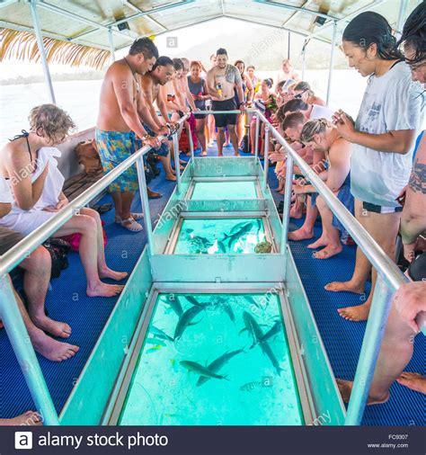 glass bottom boat ltd bluefin trevally feeding under the glass bottom boat of